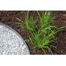 PondEdge 10 zemnících kolíků