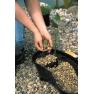 Koš na vodní rostliny čtvercový 23cm