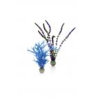 biOrb rostliny modrá a fialová