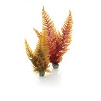 biOrb rostliny podzimní barvy