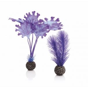 biOrb rostliny fialové malé