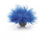 biOrb vodní ozdobná tráva modrá