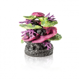 biOrb dekorace korálový útes zeleno-fialový
