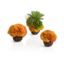 biOrb coral ball set orange