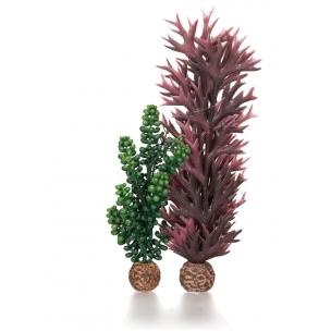 biOrb mořské perly a řasy, olivově zelená