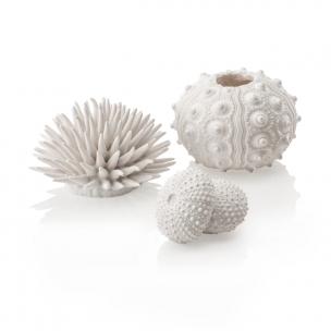 biOrb mořští ježci, bílí