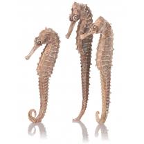 biOrb mořský koník, 3 kusy, přírodní