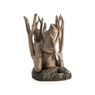 biOrb kořen, střední